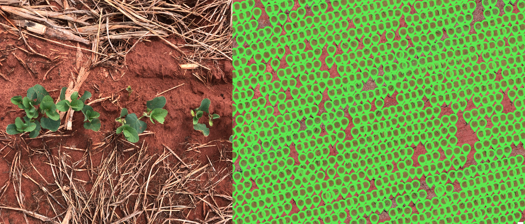 Drone and Photogrammetry for Agro-Business:  How small is too small?